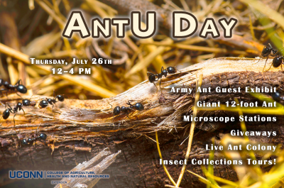 AntU day flyer