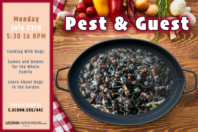 pests and guest graphic
