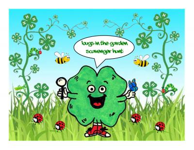 clover around bugs