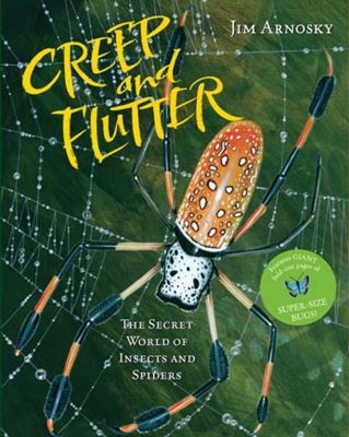 Creep and Flutter book cover