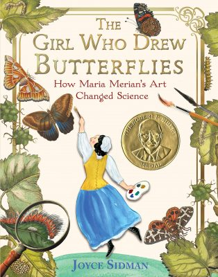 The girl who drew butterflies book cover